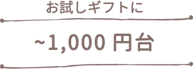 ~1000円台