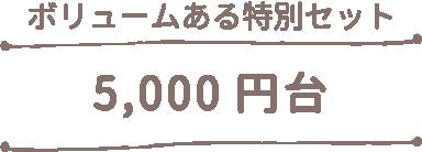 5000円台