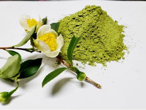 南国の緑茶『べにふうき』
